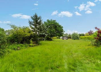Thumbnail 3 bed detached bungalow for sale in Hog Lane, Ilketshall St. Lawrence, Beccles