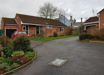 Thumbnail 3 bed detached bungalow for sale in Dukes Way, Axminster