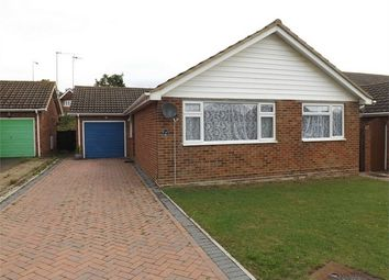 Thumbnail 3 bed detached bungalow to rent in College Road, Bexhill-On-Sea, East Sussex