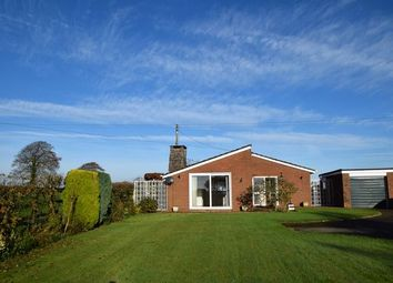Thumbnail 3 bedroom detached bungalow to rent in East Worlington, Crediton
