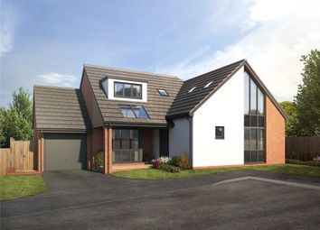 Thumbnail 4 bedroom detached bungalow for sale in Gardiners Meadow, Seaton, Devon