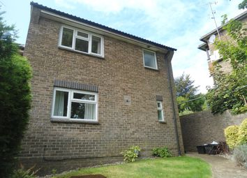 4 bed semi-detached house to rent in Peace Close, Brighton BN1