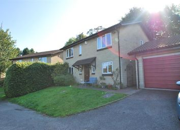 Thumbnail 4 bed property to rent in Bathwick Rise, Bath