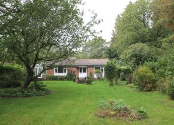 Thumbnail 3 bed bungalow to rent in Graffham, Petworth