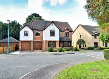 Thumbnail 5 bed detached house for sale in St. Marys Park, Royston