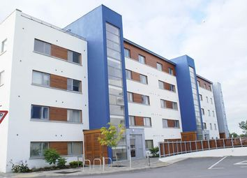 Thumbnail 2 bed apartment for sale in 11 Jolly Mariner, Athlone East, Westmeath
