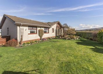 Thumbnail 4 bed detached bungalow for sale in Abbey Gardens, Coupar Angus, Blairgowrie