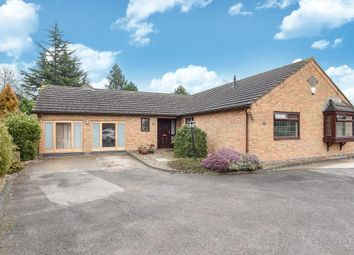 Thumbnail 6 bed detached bungalow for sale in Upper Lyde, Hereford