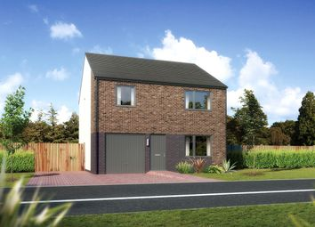 "Thumbnail 4 bed detached house for sale in ""Denewood"" at Carron Den Road, Stonehaven"