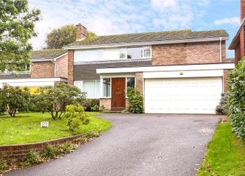 Thumbnail 4 bed detached house for sale in Love Lane, Petersfield, Hampshire