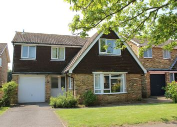 Thumbnail 4 bed detached house to rent in Ash Drive, Seaford