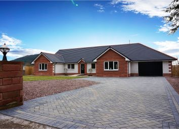 Thumbnail 5 bed detached bungalow for sale in Beeswing, Dumfries