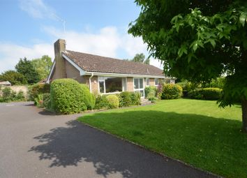 Thumbnail 3 bed detached bungalow for sale in Homefield, Child Okeford, Blandford Forum