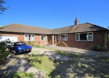 Thumbnail 4 bed detached bungalow for sale in Vasterne Hill, Purton, Wiltshire