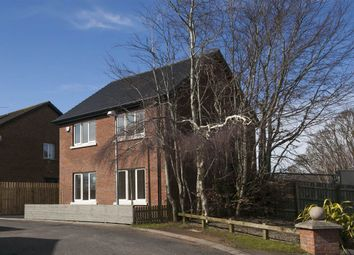 Thumbnail 3 bed detached house for sale in 1, Sandymount Close, Lisburn