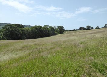 Thumbnail Land for sale in Charmouth, Bridport, Dorset
