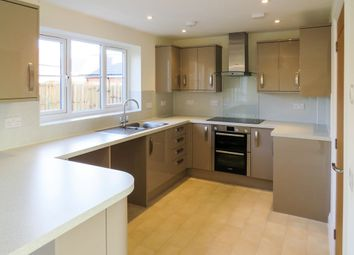 Thumbnail 3 bed detached house for sale in Shotesham Road, Poringland, Norwich