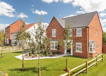 """Thumbnail 4 bedroom detached house for sale in """"Holden"""" at Trowbridge Road, Westbury"""