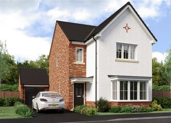 "Thumbnail 4 bed detached house for sale in ""Esk"" at Joe Lane, Catterall, Preston"