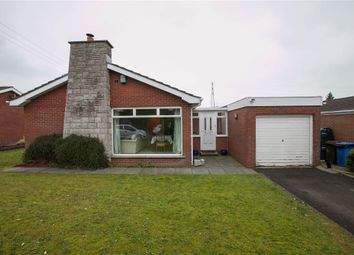 Thumbnail 3 bed terraced bungalow for sale in 35, Hambleden Park, Belfast