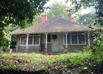 Thumbnail 4 bed detached bungalow for sale in Sharon, Hawkhurst Road, Cranbrook, Kent