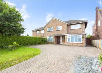Thumbnail 4 bed semi-detached house for sale in Chignal Road, Chelmsford, Essex