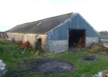 Thumbnail Property for sale in Agricultural Building - The Stores, Rafael Fawr, The Fraich, Fishguard, Pembrokeshire