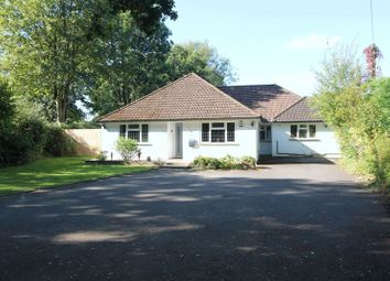 Thumbnail 4 bed bungalow for sale in Ashurst Drive, Tadworth