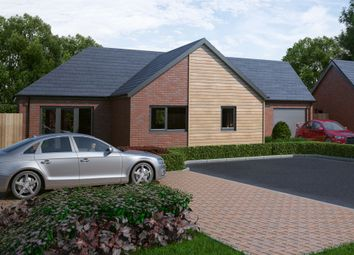 Thumbnail 3 bedroom detached bungalow for sale in Sweechgate, Broad Oak, Canterbury, Kent