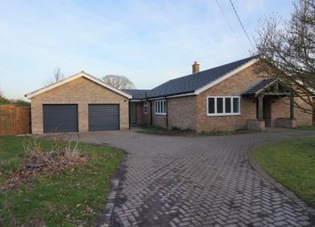 Thumbnail 4 bed detached bungalow for sale in Link Lane, Bentley, Ipswich, Suffolk