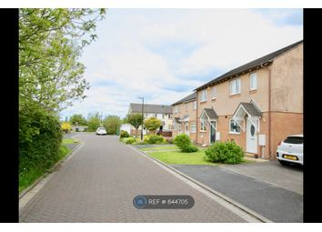 Thumbnail 2 bed semi-detached house to rent in Rysdale Crescent, Morecambe