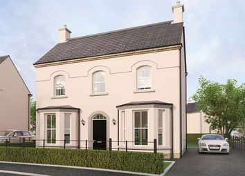 Thumbnail 4 bed detached house for sale in 130, Readers Park, Ballyclare