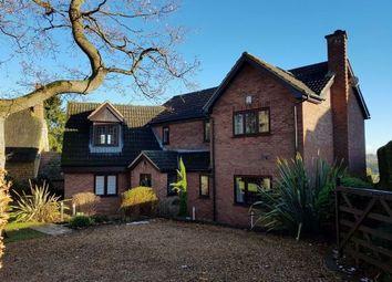 Thumbnail 4 bed detached house for sale in Hamilton Lane, Great Brington, Northampton