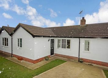 Thumbnail 4 bed detached bungalow for sale in Maes Y Bryn, Berthengam, Holywell