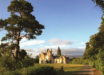 Thumbnail 30 bed country house for sale in Dall Estate, Perth And Kinross