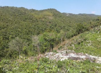 Thumbnail Land for sale in Belvedere Road, Red Hills, Kingston 19