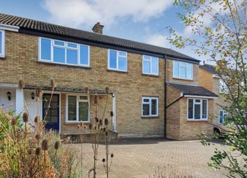Thumbnail 5 bed semi-detached house to rent in Drummond Ride, Tring, Hertfordshire