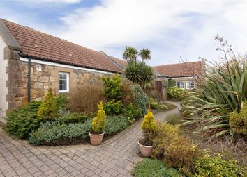 Thumbnail 4 bed bungalow for sale in West Grange, St Andrews, Fife