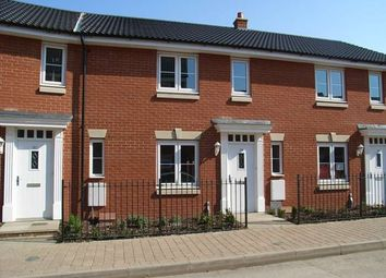 Thumbnail 3 bed detached house to rent in Bull Road, Ipswich