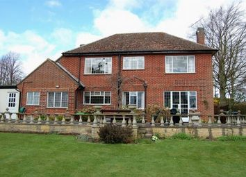 Thumbnail 3 bed detached house to rent in Earls Barton Road, Great Doddington, Northampton