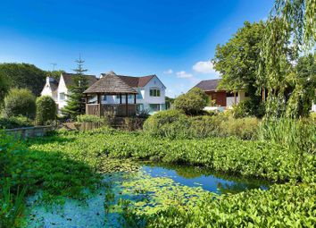 Thumbnail 5 bed detached house for sale in Rudry Road, Lisvane, Cardiff