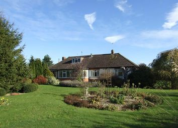 Thumbnail 3 bed detached bungalow for sale in St. Ediths Marsh, Bromham, Chippenham