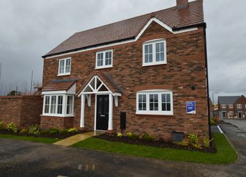 Thumbnail 4 bed detached house to rent in Squinter Pip Way, Bowbrook Meadows, Shrewsbury