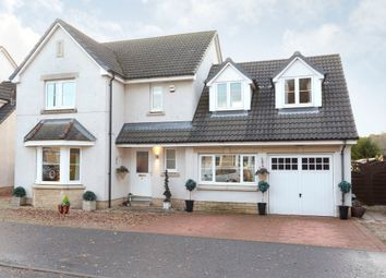Thumbnail 4 bedroom detached house for sale in Silver Birch Drive, Dundee