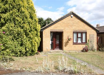 Thumbnail 2 bed detached bungalow to rent in Gilbey Close, Redhill Grange, Wellingborough