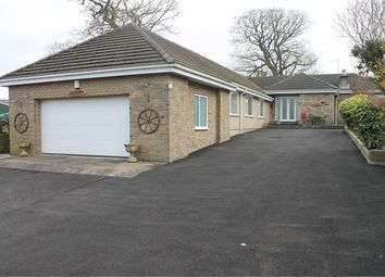 Thumbnail 3 bed detached bungalow for sale in New Ridley Village, Stocksfield