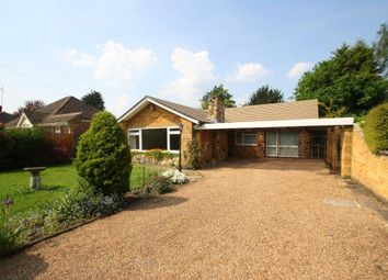 Thumbnail 4 bed detached bungalow to rent in Almners Road, Lyne, Surrey