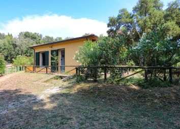 Thumbnail 1 bed apartment for sale in C514, Casale Marittimo, Pisa, Tuscany, Italy