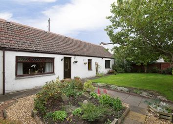 Thumbnail 3 bed cottage to rent in Well Road, Lunanhead, Forfar