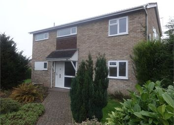 Thumbnail 4 bed detached house to rent in Dilmore Avenue, Fernhill Heath, Worcester